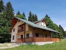 Accommodation Bistrița-Năsăud county, Casa Class B&B