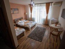 Accommodation Petroșani, Casa Alex Vila
