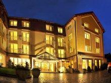 Hotel Costești, Citrin Hotel