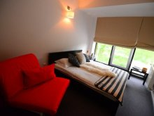 Accommodation Hășdate (Gherla), Hotel Biscuit