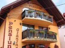 Accommodation Gura Cornei, Gianina Guesthouse