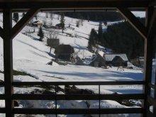 Accommodation Arieșeni Ski Resort, Vila Apuseni Guesthouse