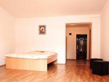 Apartament Săucani, Apartamente Domino Centru