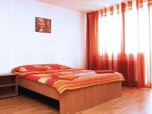 Apartment Silivaș, Domino Apartments Mărăşti