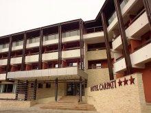Hotel Braşov county, Carpaţi Hotel