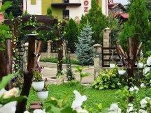 Panzió Buzău megye, Roza Panzió