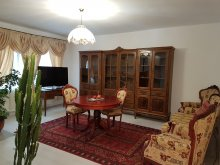 Accommodation Iași county, Vintage Apartment