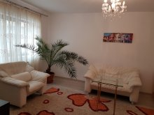 Accommodation Iași county, Style Apartment
