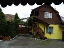 Accommodation Ocna de Jos, House Küküllőparti