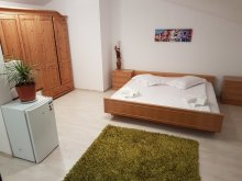 Accommodation Iași county, Opened Loft Apartman