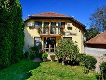 Accommodation Hunedoara county, Alina B&B