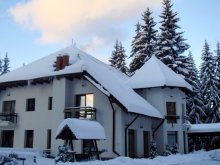 Guesthouse Valea Lungă-Ogrea, Vila Daria