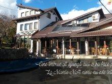 Cazare Mitropolia, Casa de vacanță La Marele Moft