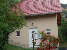 Casă de vacanță Transilvania, Casa La Lepe