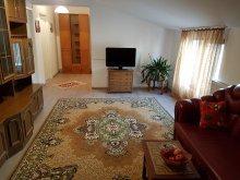 Accommodation Iași county, Rent Holding - Venetian Apartment