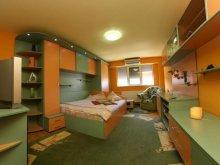 Accommodation Văliug, Vidican 1 Apartment