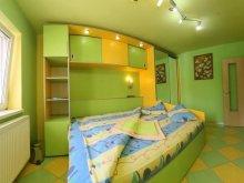 Accommodation Văliug, Vidican 6 Apartment