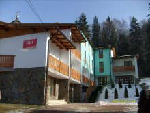 New Year's Eve Package Romania, Olt B&B
