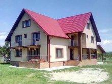 Accommodation Petroșani, Ana-Maria B&B