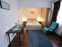 Accommodation Bănești, Brown Studio Apartment