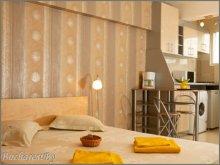 Apartament Negrilești, Apartament Studio Silver