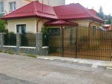 Accommodation Dragoslavele, Bunicii Vacation home
