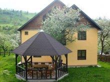 Accommodation Bălteni, Monica B&B