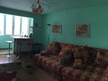 Cazare Azuga, Apartamentul cu Bucurie