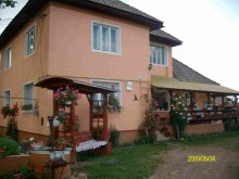 Accommodation Custura, Jutka Guesthouse