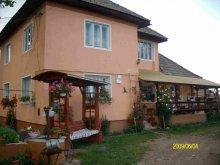Accommodation Hălmăsău, Jutka Guesthouse