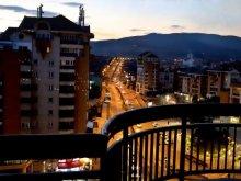 Accommodation Galda de Jos, Cityview Apartment