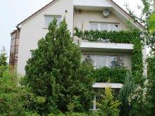 Apartment Mogyorósbánya, Donau Apartment