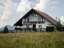 Accommodation Bistrița-Năsăud county, Maria Chalet