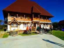 Panzió Máramaros (Maramureş) megye, Tichet de vacanță, Raluca Panzió