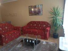 Accommodation Mogyoród, Lavander Apartament