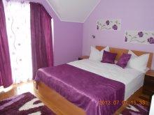 Accommodation Brădet, Vura Guesthouse