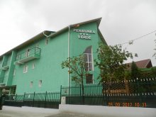 Panzió Tritenii de Jos, Verde Panzió