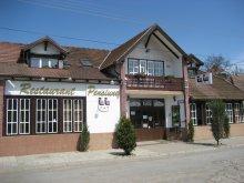 Bed & breakfast Mureş county, Tip-Top B&B