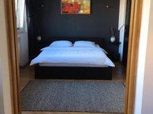 Accommodation Făurei, Roxana's Flat in Old City