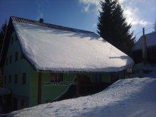 Accommodation Băile Homorod Ski Slope, Bíró Guesthouse