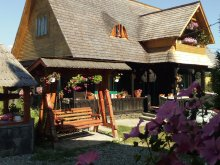 Accommodation Baia Mare, Bunicilor B&B