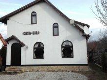 Accommodation Dragoslavele, Lili's House