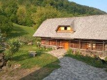 Panzió Máramaros (Maramureş) megye, Tichet de vacanță, Ioana Panzió