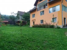 Accommodation Dragoslavele, Anca și Nicușor Vacation Home