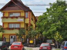 Accommodation Coltău, Cremona B&B