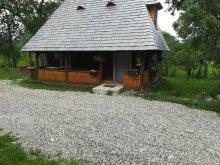 Vilă Cavnic, Casa Călina