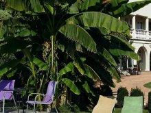 Accommodation Misefa, Andrea Guesthouse