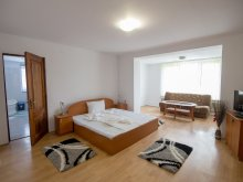 Apartment Sibiu county, Arin Guesthouse