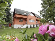 Accommodation Valea Rece, Csermely Guesthouse