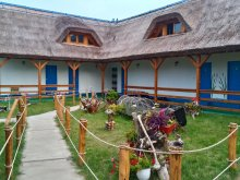 Accommodation Tulcea county, Alb Albastră Guesthouse